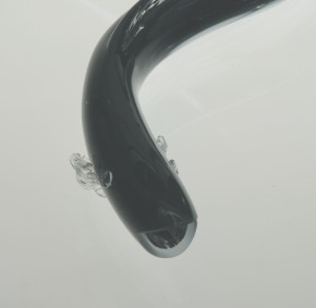 Glass eel