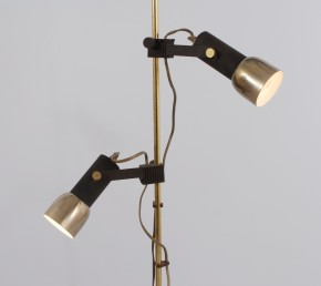 Floor lamp with two lights